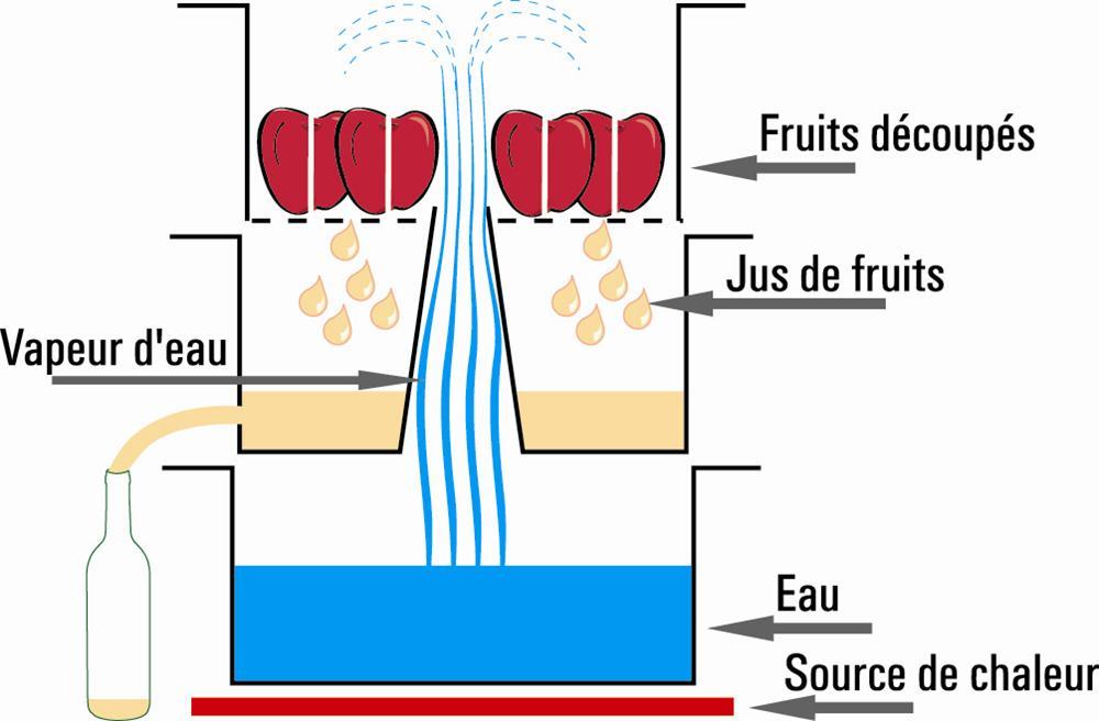 extracteur de jus à vapeur 26 cm induction - tom press