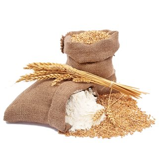 Farine de blé: comment s'y reconnaître?