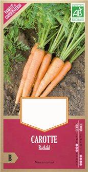 Graines de carotte Rothild